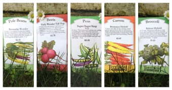 Seeds for your spring garden