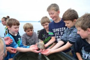 Camp Sealth's Environmental Education students meet a new friend in the touch tanks.