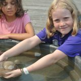 girl in touch tank