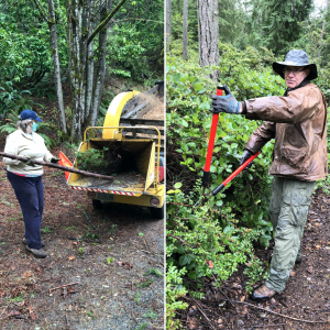 Split photo: left side shows woman putting branch in chipper and right side shows man cutting brush away from trail
