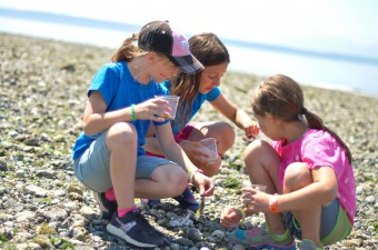 Exploring the beach at Carkeek Park Day Camp