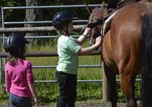 campers grooming horses