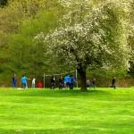 Orchard kids playing